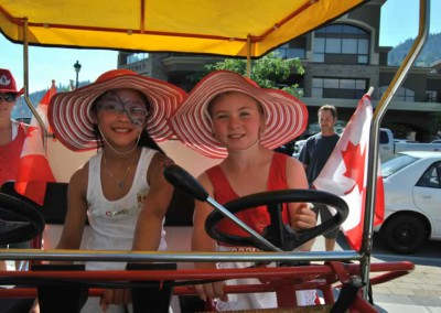 Canopy Bike Daisies