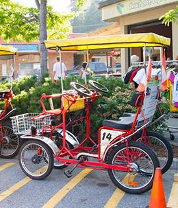 Okanagan Bike Rentals